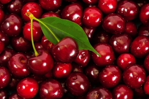 Background of ripe cherries